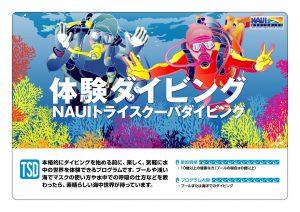 満席:和歌山県日高 ダイビング体験コース