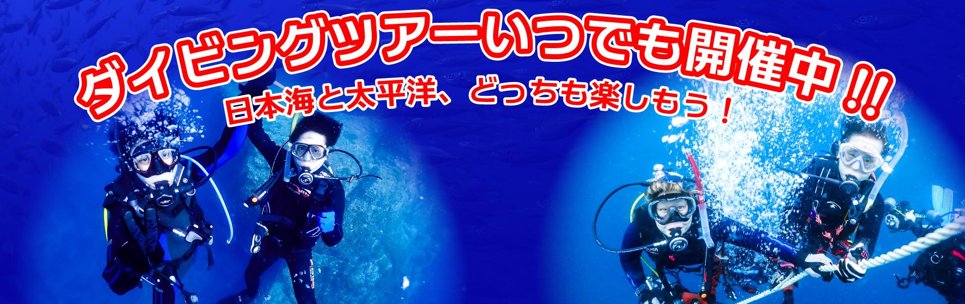 ダイビングツアーいつでも開催中!!日本海と太平洋、どっちも楽しもう!